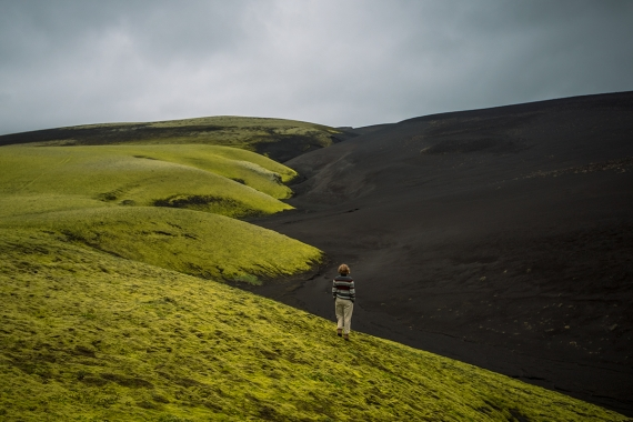 A strict line was drawn between the black sand and the vegetation