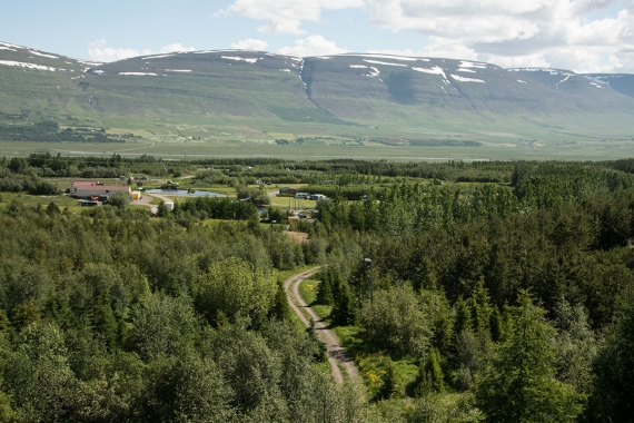 """Kjarnaskógur, the """"forest"""" south of Akureyri is so much more than a forest."""