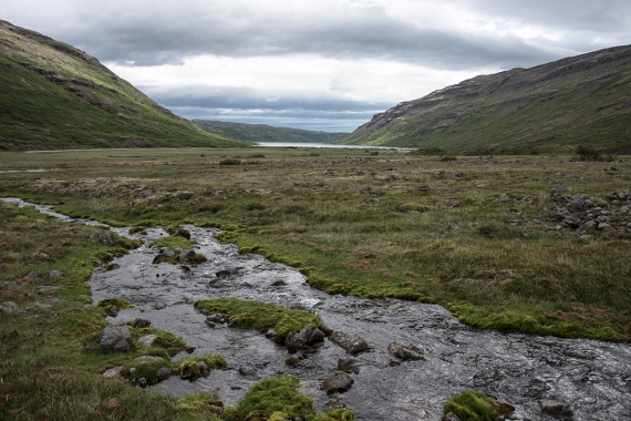 Hrafna Flóki headed into Vatnsfjörður where he at last found something remotely akin to the tales he had been told. Mild weather, fertile land,