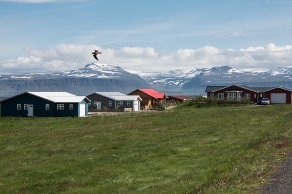Reykhólar is a tiny village in the West Fjords in Iceland