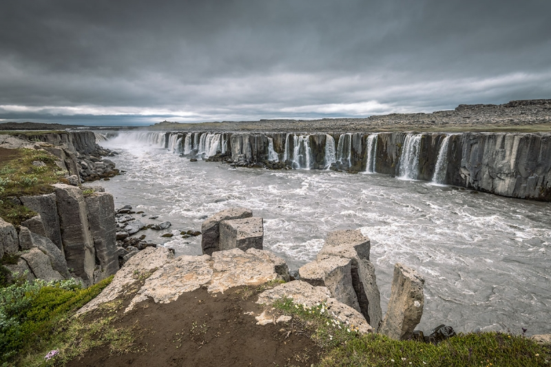 Selfoss waterfall is located in Jökulsárgljúfur canyon in the Northern Region in Iceland