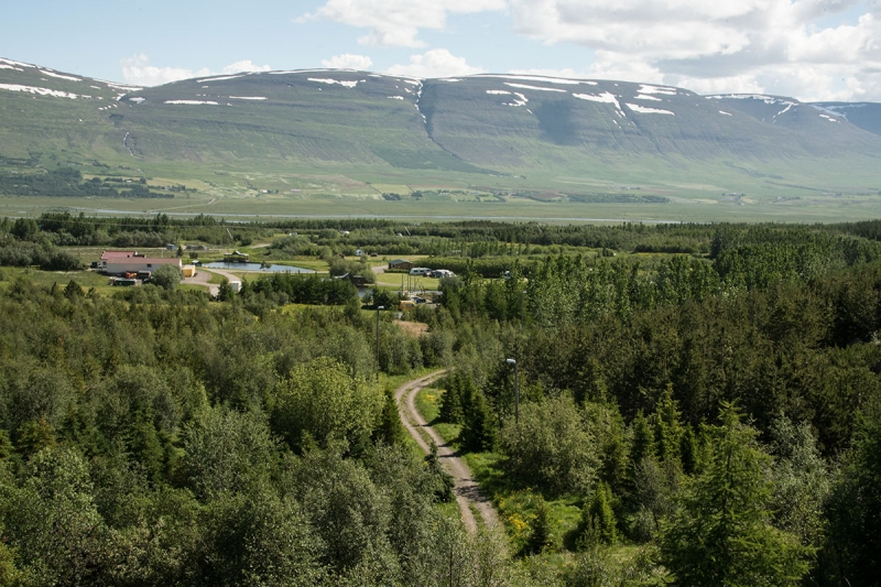 "Kjarnaskógur, the ""forest"" south of Akureyri is so much more than a forest."