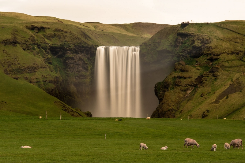 Skógafoss in the Skógá River is one of the largest waterfalls in Iceland