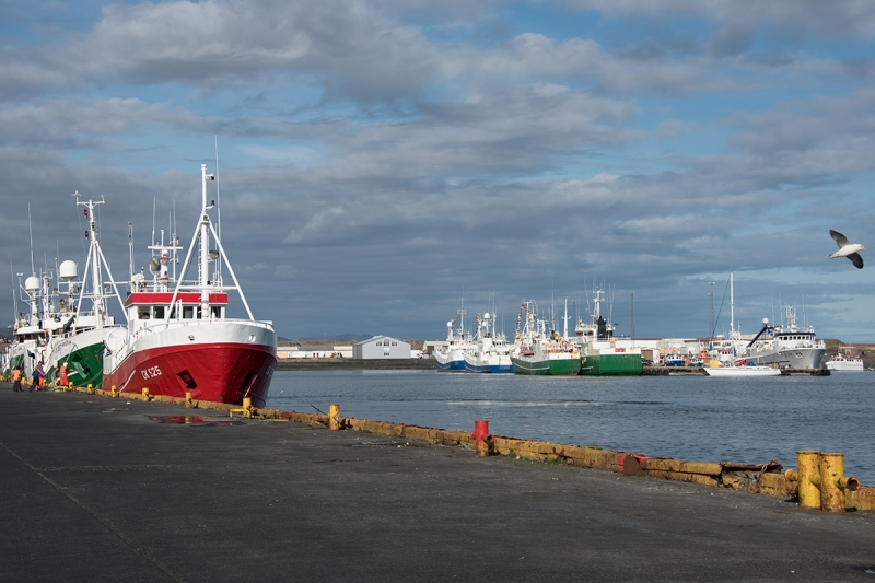 The fishing industry is large in the town of Grindavík