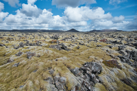 Ögmundarhraun lava field is a lava carpet in the landform at Reykjanes Peninsula