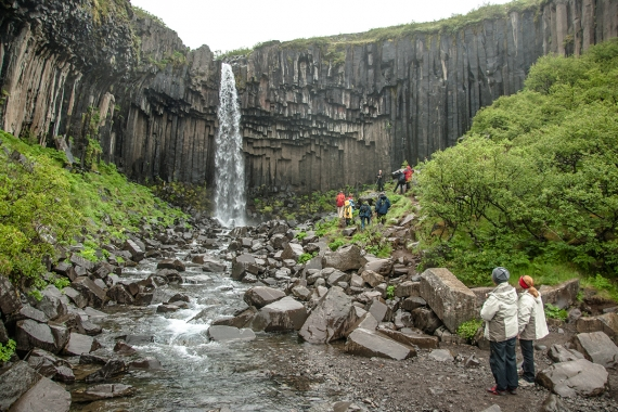 Svartifoss (The Black Falls) in the Skaftafell National Park, is surrounded by black, hexagonal basalt columns
