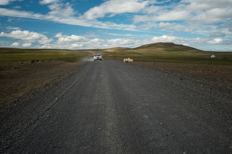 What kind of rent car fits for an Iceland road trip?