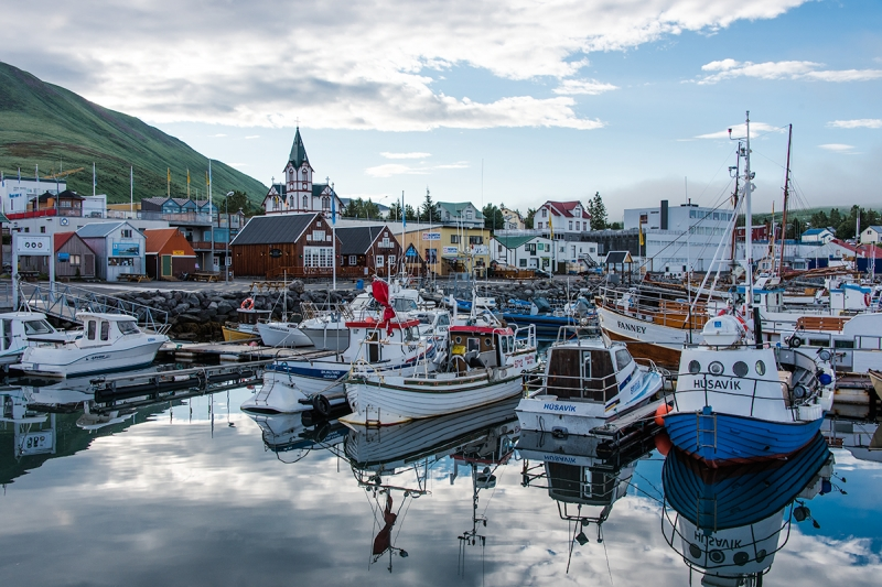 The harbour in Húsavík is simply a joyful place to visit with activities from shark catchers to fabulous whale watching boats