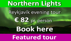 Northern Lights tour in Reykjavik
